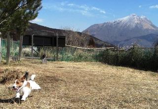 2008_0228湯布院0002.JPG