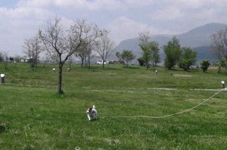 2008_050camp02.JPG