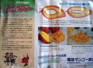 2008_0729mango0046.JPG