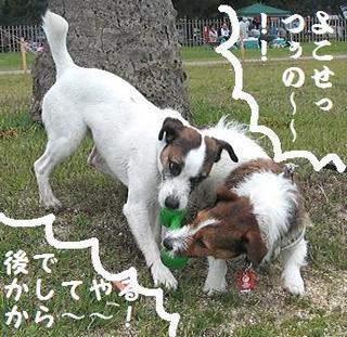 2009_0505tetsu0285.JPG
