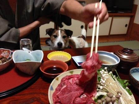 写真 晩御飯4.JPG