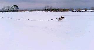 2007_0203雪山0347.JPG