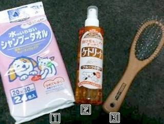 2007_0213ダニ20343.JPG