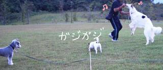 2007_10013人 広場0016.JPG