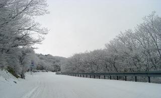 2008_0101雪遊び20195.JPG