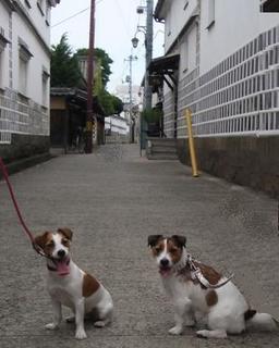 2008_0817kurashiki−7.JPG