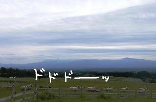2008_0927大脱走0187.JPG
