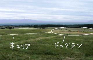 2008_0927大脱走0199.JPG