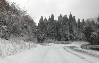2009_0111雪0020.JPG