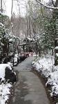 2009_0111雪0090.JPG