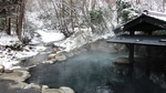 2009_0111雪0091.JPG