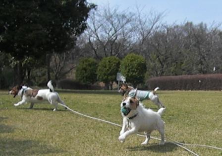 2009_0321tetsu0017 - .JPG