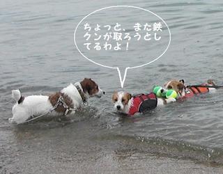 2009_0505tetsu0237.JPG