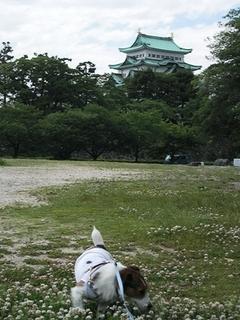 2009_0529tetsu0033.JPG