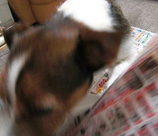 2009_0603tetsu0076.JPG