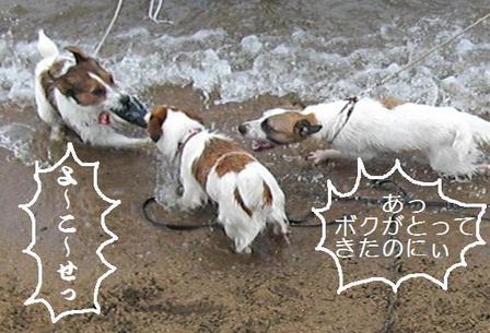 2009_0712tetsu0117.JPG