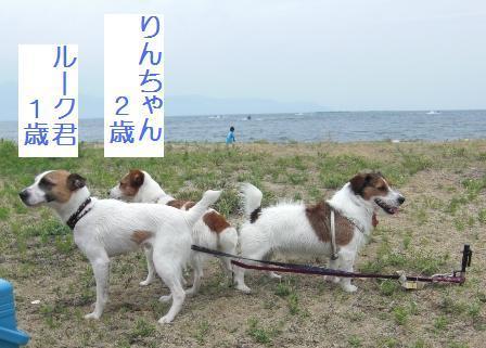 2009_0712tetsu0159 - コピー.JPG