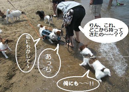 2009_0712tetsu0177.JPG