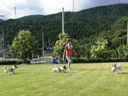 2009_0816tetsu0096.JPG