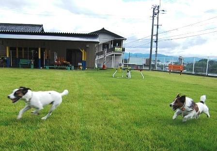 2009_0816tetsu0150.JPG