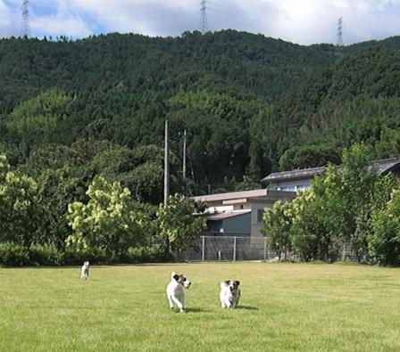 2009_0816tetsu0219.JPG
