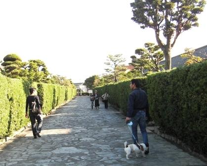 2009_1010tetsu0035.JPG