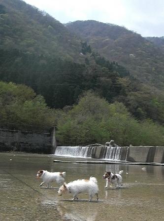 2010_0505tetsu0440.JPG